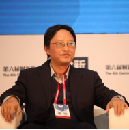 中国人民银行金融研究所 副所长 纪敏